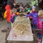 Getreide und Silage zum Anfassen